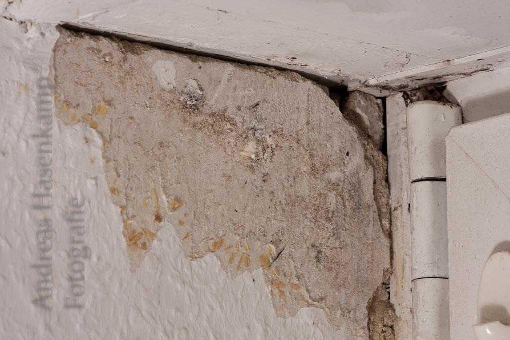 Hilfe bei Wohnungsmängeln: Fachleute vom Amt beraten in Münster