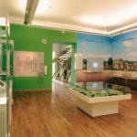 Stadtmuseum  Münster digital – Online-Veranstaltung für Lehrkräfte