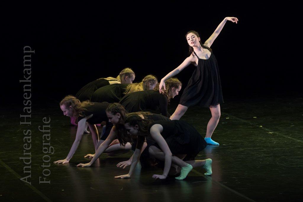 Tanzfestival Münster feiert Jubiläum mit 14 Tanz-Ensembles 1