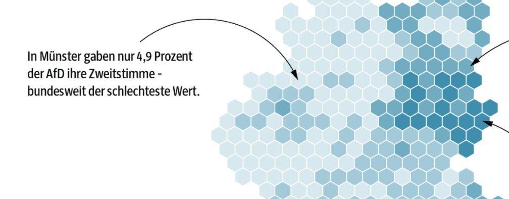 https://www.sueddeutsche.de/politik/bundestagswahl-von-afd-hochburgen-und-welkenden-spd-landschaften-1.3653498