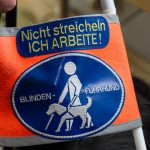 Mit Blindenführhund in anderes Leben: Blinder berichtet über Möglichkeiten