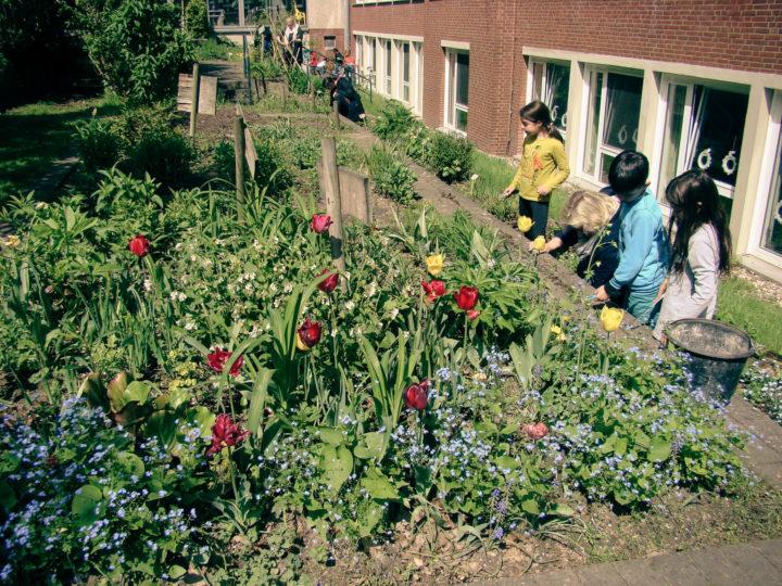 Auch die Schülerinnen und Schüler der Eichendorffschule sind regelmäßig schwer aktiv in ihrem Schulgarten.Foto: Eichendorffschule. V