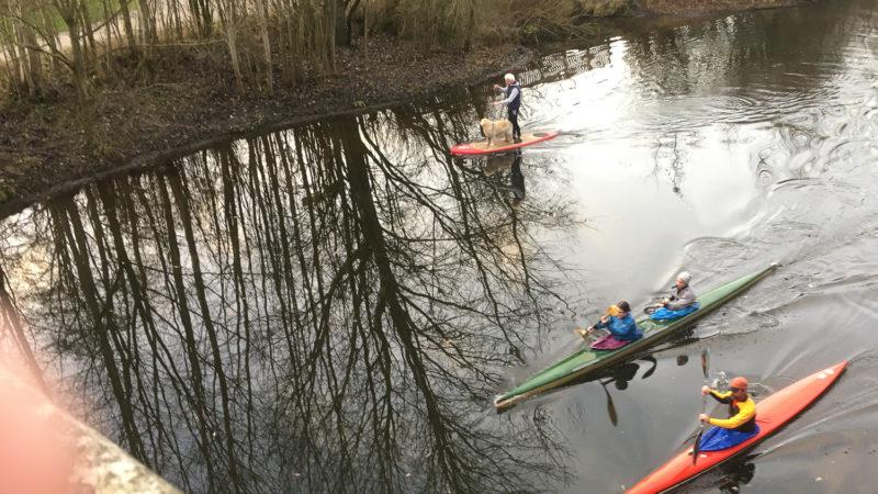 Angelmodde: Drei Kanuten sowie ein Stehpaddler mit Hund auf der Werse. Foto: A. Hasenkamp.