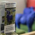 Jubiläums-Schulfest an der Friedensschule Münster lockt viele 44
