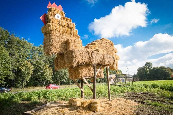 """Preise für Agrarland in NRW """"dramatisch"""" gestiegen"""