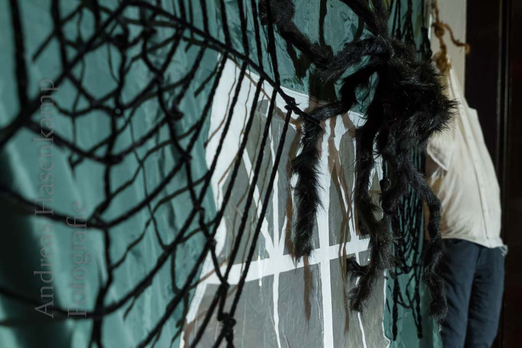 Halloween-Party zum Gruseln: Stadthalle voll seltsamer Gestalten 2