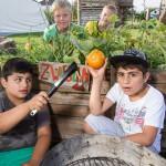 Ferienprogramm des BauSpielTreffs startet am 28. Juli 2014 an der Holtrode