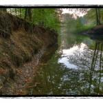 Tiergarten Wolbeck in Fotos