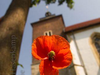 Außenansicht der Kirche St. Nikolaus in Münster-Wolbeck. Foto: A. Hasenkamp.