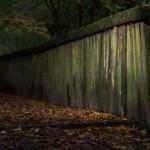 Brücke im Tiergarten wird saniert
