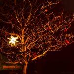 26. Wolbecker Weihnachtsmarkt: Reichlich Neues 9
