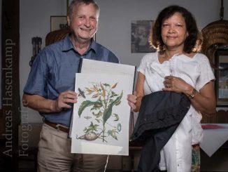 Von Frankfurt nach Surinam: Außenseiterin erkundet Insekten