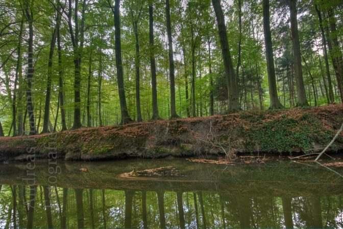 Tiergarten Wolbeck 1