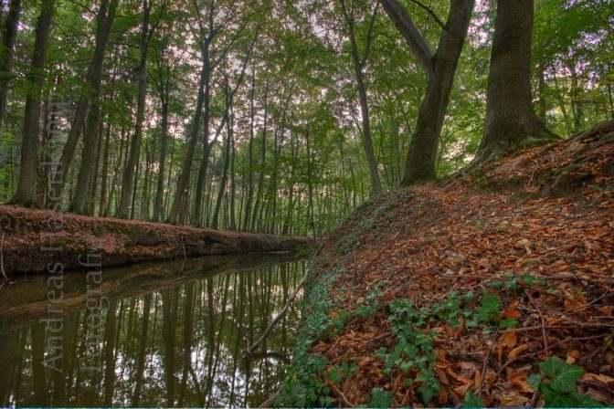 Tiergarten Wolbeck 3