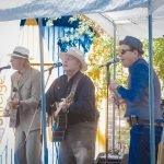 """""""Trompetenbaum und Geigenfeige"""" mit Hootin' the Blues im Drostenhof 20"""