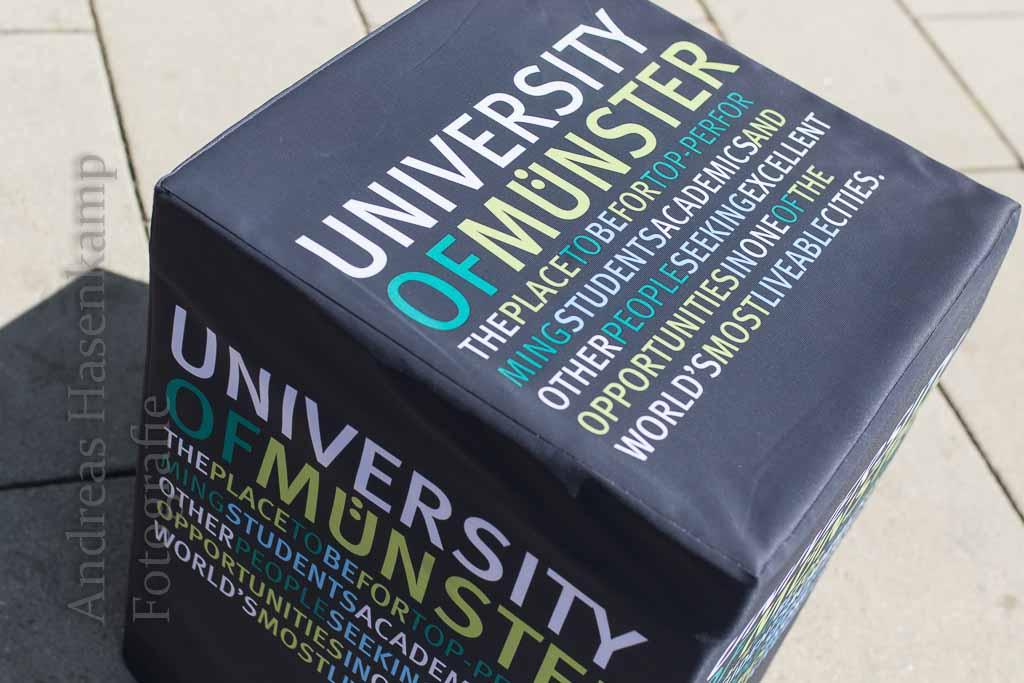 """Urteilskraft statt Vermutungen: Wirtschaft besser verstehen Internet-Serie """"Münster Practice and Policy"""" von Ökonomen der WWU erklärt Fragen der Wirtschaftswelt"""
