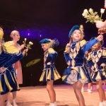 Hippenball zum 66. Geburtstag der KG ZiBoMo mit besonderen Effekten 33