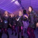 Hippenball zum 66. Geburtstag der KG ZiBoMo mit besonderen Effekten 9